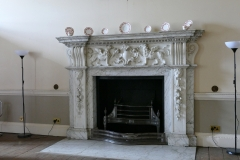 The Ante Drawing Room Fireplace.